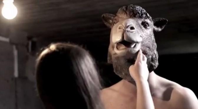 Et galehus av den gode typen – Llama Asylum musikkvideo